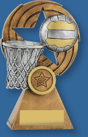 Generic netball trophy with silver ball and basket on bronze backdrop and base