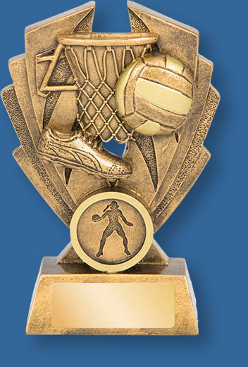 Netball theme trophy gold ball on gold backdrop and base