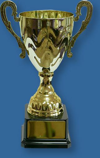 Gold Trophy Cup on Black Plastic Base