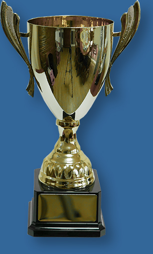 Gold Trophy Cup on Black Plastic Base