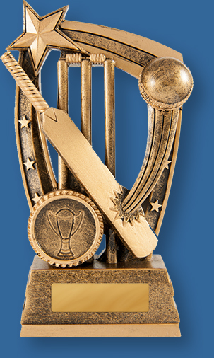 Bronze generic resin trophy with bat, ball and stumps graphic.