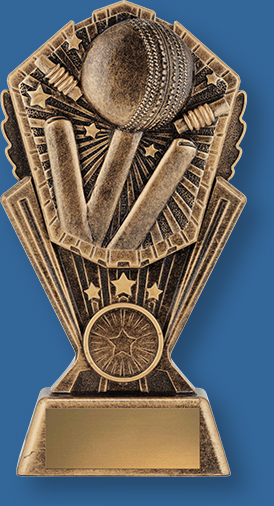Bronze Cricket Theme with with ball, stumps and Bails detail on riser.