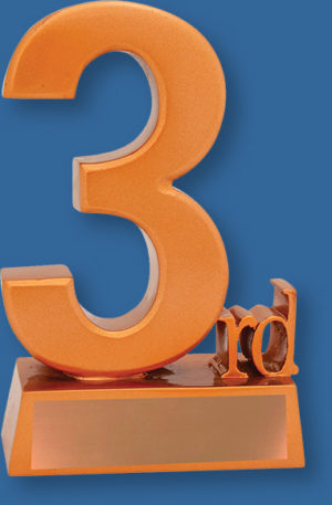 3rd Place Trophy Generic Resin.3rd Place trophy finished in vibrant matt bronze tone with engraving plate.