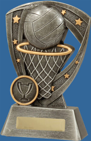 Netball Trophy Generic Resin. Pro Shield Series. A generic shield inspired theme, finished in classic antique silver. Features ball and net detail.