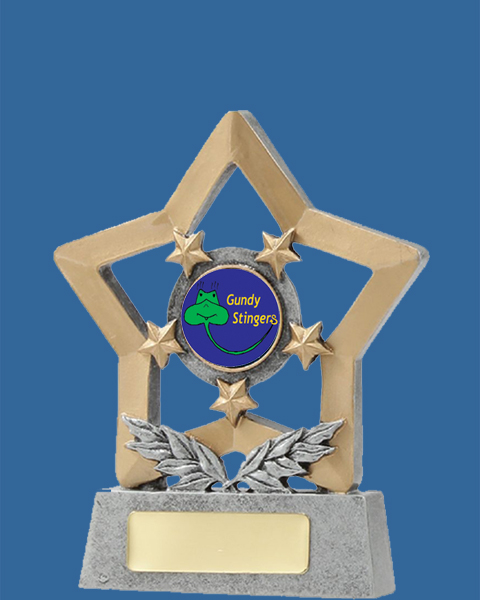 12998t Antique Silver Resin Logo Trophy with gold engraving plate