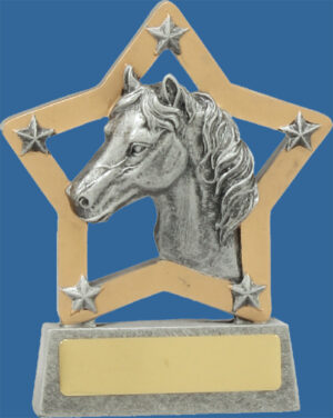 A well designed and sculptured Horse Trophy. The detail of a horse head profile inside a star is stunning. Resin with Silver and gold tones.